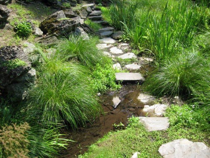 Bassin d eau et jardins japonais - Bassin jardin japonais ...