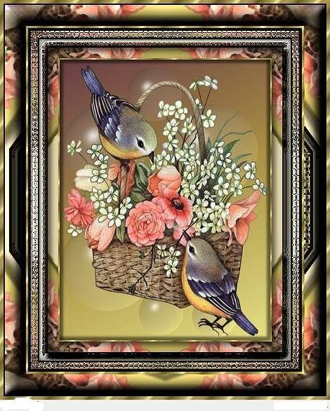 oiseaux animés